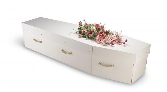 Le cercueil en carton, vraiment plus écologique?